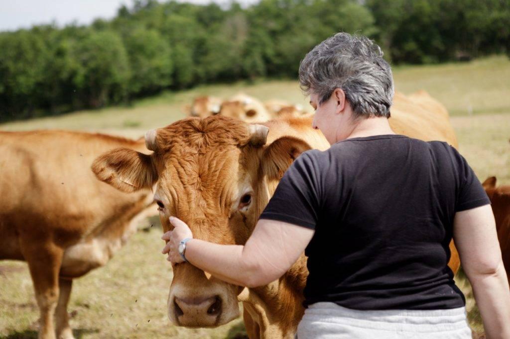 0.3 - Femme + Vache